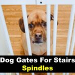 best dog gates for stairs with spindles